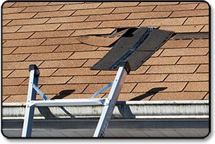 roof-maint